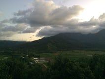 Taro Fields in Hanalei Valley on Kauai Island, Hawaii during Sunset. Stock Images
