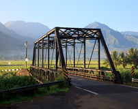Taro plants at Hanalei Bridge. Bridge on the road between Princeville and Hanalei with mountains in the rear stock image