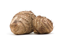 Taro root. Fresh whole taro root over white background Stock Photo