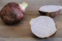 Taro Root Stockbild