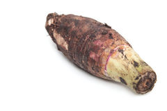 Taro Root on isolate white background Royalty Free Stock Photography