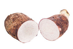 Taro root isolated Royalty Free Stock Photos
