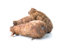 Taro root on white background Stock Photography