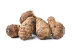 Taro root on white background Royalty Free Stock Photos