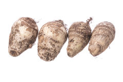 Taro root on white Stock Photography