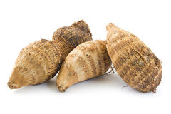 Taro roots Royalty Free Stock Photo
