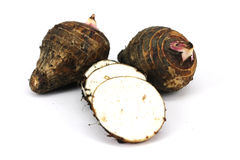Taro Roots Stock Images