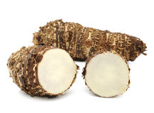 Taro roots on white Royalty Free Stock Images