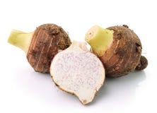 Taro roots  on white Stock Image