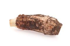 Taro roots on white background Stock Photos