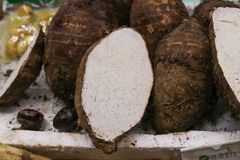 Taro. Isolated for sell in the market Royalty Free Stock Photos