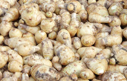 Free Taro Vegetable Stock Images - 15663874