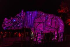 Taronga动物园犀牛光雕塑的生动的悉尼 免版税库存照片