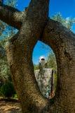 Tarot Garden near Pescia Fiorentina in Tuscany Stock Photo