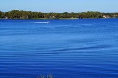 Tarpon озера Стоковые Изображения RF