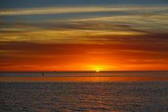 Tarpon wiosny plaża Fotografia Royalty Free