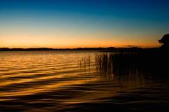 Tarpone del lago al tramonto Immagine Stock Libera da Diritti