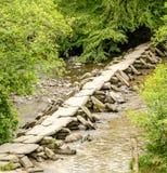 Tarr fa un passo Exmoor Fotografie Stock Libere da Diritti