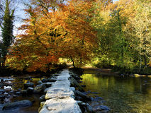 Tarr Steps Stock Images