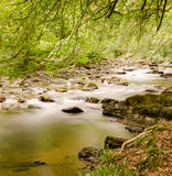 Tarr Steps Exmoor Royalty Free Stock Image
