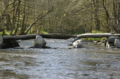 Tarr Steps & River Barle Royalty Free Stock Images