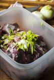 Tarra met gemarineerd vlees voor het roosteren Stock Afbeeldingen