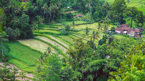 Tarrace del riso e piccolo villaggio in Sidemen, Bali, Indonesia Immagini Stock Libere da Diritti