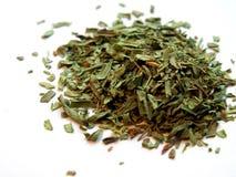 Tarragon. Spices - tarragon Stock Images