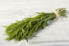Tarragon bunch. Fresh tarragon herb bunch isolated on a white table stock image
