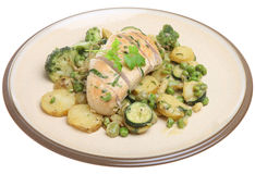 Tarragon Chicken Breast with Vegetables Stock Photo