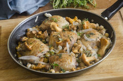 Tarragon chicken. With chickpeas and girolles royalty free stock image