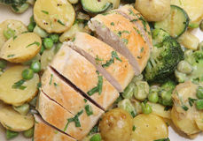 Tarragon Chicken with Vegetables Stock Image
