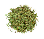 Tarragon herb isolated Stock Image