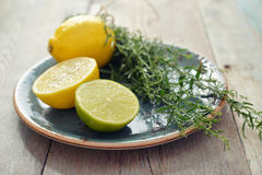 Tarragon with lemon and lime Royalty Free Stock Image