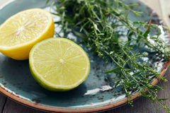 Tarragon with lemon and lime. Fresh tarragon with lemon and lime on plate on wooden background Stock Photos