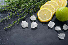 Tarragon with lemon, sugar and lime Royalty Free Stock Photo