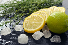 Tarragon with lemon, sugar and lime Royalty Free Stock Images