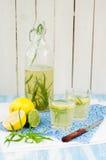 Tarragon Lemonade. Refreshing Tarragon Lemonade, copy space for your text royalty free stock photos