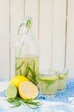 Tarragon Lemonade. Refreshing Tarragon Lemonade, copy space for your text royalty free stock images