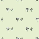 Tarragon pattern. Tarragon love in idleness pattern Stock Photography