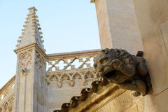 Tarragona καθεδρικός ναός (Ισπανία) Στοκ Εικόνες