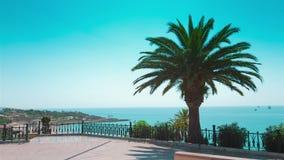 Tarragona balkon, piękny denny widok i drzewko palmowe, Costa Daurada, Hiszpania zbiory