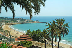Tarragona beach. Palm trees and view overlooking Tarragona beach Royalty Free Stock Photography