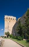 tarragona ściany Zdjęcie Royalty Free