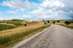 Tarred road passing through farmland Stock Photography