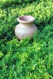 tarro antiguo en prado Imagen de archivo libre de regalías