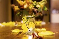 Tarro con la vela adornada con las hojas de otoño Fotografía de archivo