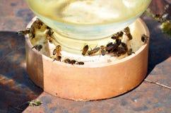 Tarro de agua con las abejas en él Imagenes de archivo