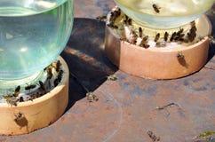 Tarro de agua con las abejas en él Fotografía de archivo