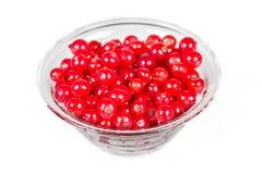 Tarro de cristal con las pasas rojas Foto de archivo libre de regalías
